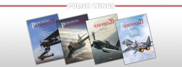 Polish WIngs banner